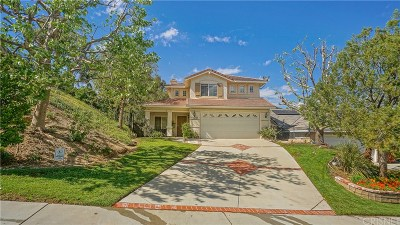 Castaic Single Family Home For Sale: 28027 Cascade Road
