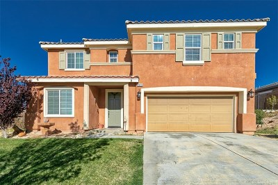 Palmdale Single Family Home For Sale: 38636 Lynx Way