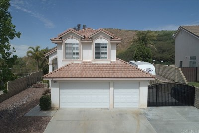 Santa Clarita, Canyon Country, Newhall, Saugus, Valencia, Castaic, Stevenson Ranch, Val Verde Single Family Home For Sale: 28427 Nicholas Circle