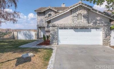 Santa Clarita, Canyon Country, Newhall, Saugus, Valencia, Castaic, Stevenson Ranch, Val Verde Single Family Home For Sale: 14519 Stone Ridge Court