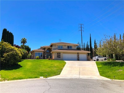 Palmdale Single Family Home For Sale: 5956 Pomegranate Place
