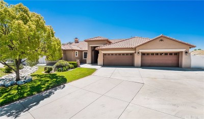 Castaic Single Family Home For Sale: 30406 Capallero Drive