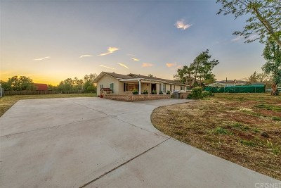 Acton Single Family Home For Sale: 32941 Crown Valley Road