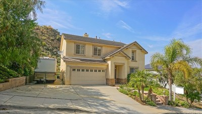 Castaic Single Family Home For Sale: 31211 Cherry Drive