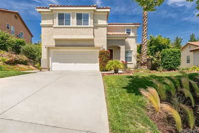 Castaic Single Family Home For Sale: 27967 Firebrand Drive