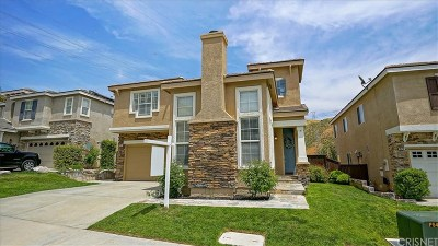 Saugus Single Family Home For Sale: 28716 Placerview