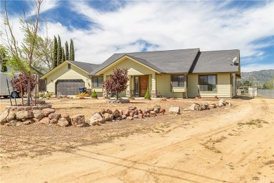 Tehachapi Single Family Home For Sale: 21201 Sierra Vista Drive