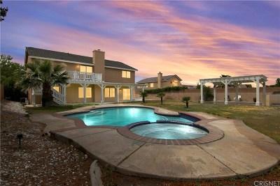 Palmdale Single Family Home For Sale: 40824 Riverock Lane