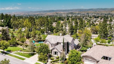 Simi Valley Single Family Home For Sale: 1231 Wetherby Street