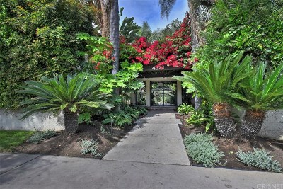 Sherman Oaks Condo/Townhouse Active Under Contract: 4321 Matilija Avenue #3