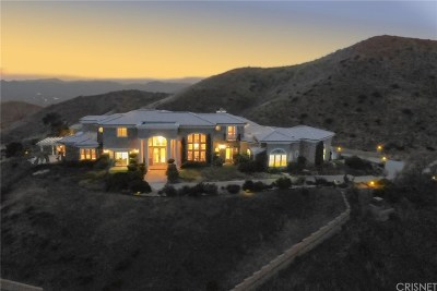 Canyon Country Single Family Home For Sale: 8511 Valley Sage Road
