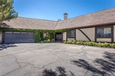 Newhall Single Family Home For Sale: 23161 8th Street