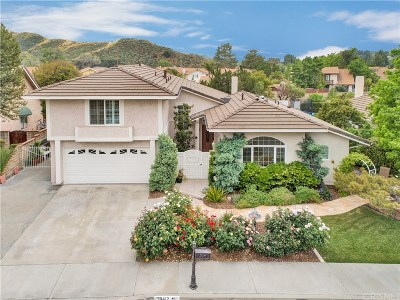Saugus Single Family Home For Sale: 20412 Calhaven Drive