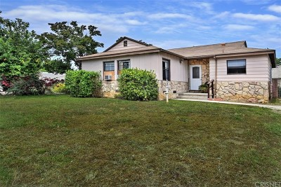 Single Family Home For Sale: 20337 Mobile Street