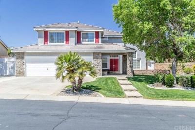 Palmdale Single Family Home For Sale: 4801 Cinnabar Avenue