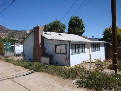 Frazier Park Single Family Home For Sale: 4321 Irvon