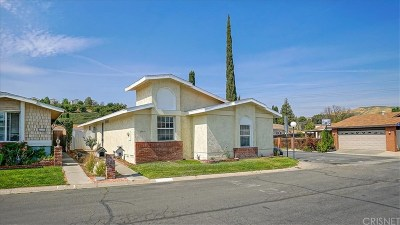Castaic Single Family Home For Sale: 27531 Ruby Lane