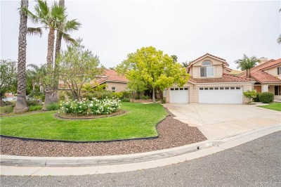 Simi Valley Single Family Home For Sale: 778 Arvada Court