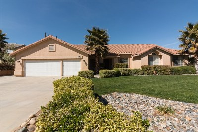 Palmdale Single Family Home For Sale: 6041 Devonshire Drive
