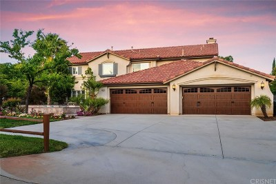 Castaic Single Family Home For Sale: 30442 Cartagena Place