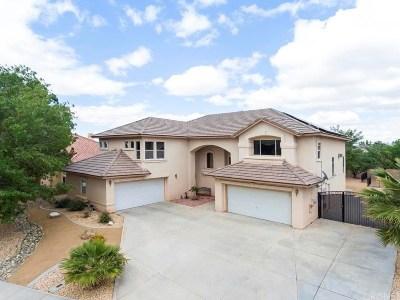 Palmdale Single Family Home For Sale: 41442 Ventana Drive