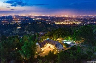 Studio City Single Family Home For Sale: 3598 Alta Mesa Drive