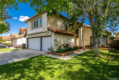 Palmdale Single Family Home For Sale: 3314 Fern Avenue