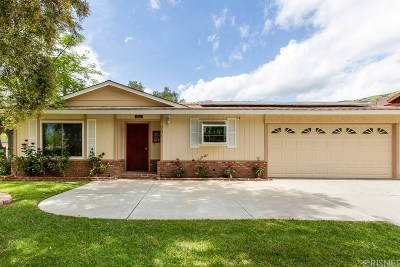 Ventura County Single Family Home For Sale: 201 3rd Street