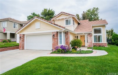 Castaic Single Family Home Active Under Contract: 28413 Applewood Lane