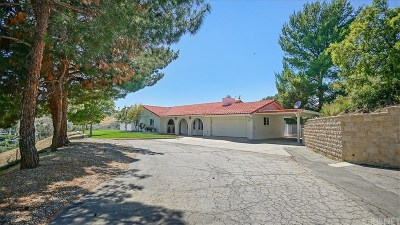Castaic Single Family Home Active Under Contract: 30403 Byfield Road
