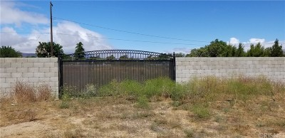 Palmdale Residential Lots & Land For Sale: Vac/22nd St W Drt/Vic Avenue