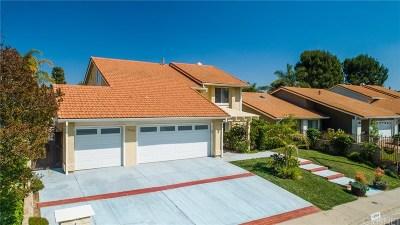 Granada Hills Single Family Home For Sale: 13368 Golden Valley Lane