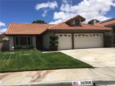 Palmdale Single Family Home For Sale: 36908 32nd Street East