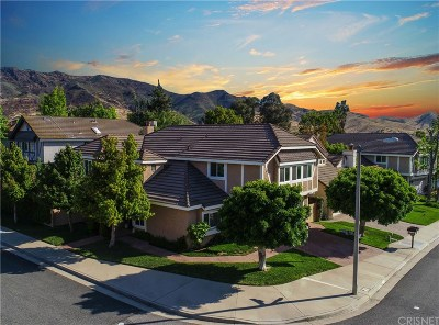 Agoura Hills Single Family Home For Sale: 30000 Trail Creek Drive