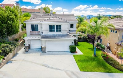Saugus Single Family Home For Sale: 28346 Gold Canyon Drive