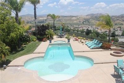 Valencia Single Family Home For Sale: 29330 Calle Primavera