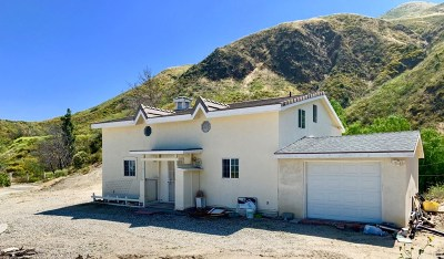 Single Family Home For Sale: 26766 Iron Canyon Road
