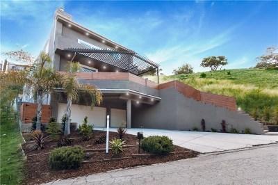 Woodland Hills Single Family Home For Sale: 4519 Ensenada Drive