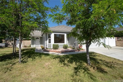 Canyon Country Single Family Home For Sale: 28305 Klevins Court