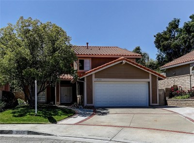 Saugus Single Family Home For Sale: 20053 Carson Court