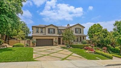 Valencia Single Family Home For Sale: 29234 Las Terreno Lane