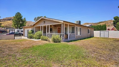 Canyon Country Single Family Home For Sale: 29704 Mums Drive