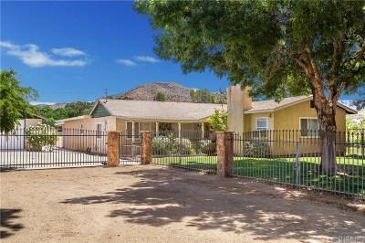 Acton Single Family Home For Sale: 2133 Carson Mesa Road