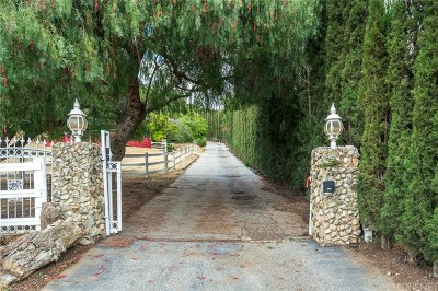 Castaic Single Family Home For Sale: 31008 Romero Canyon Road