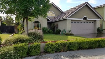 Castaic Single Family Home For Sale: 29114 Rangewood Road