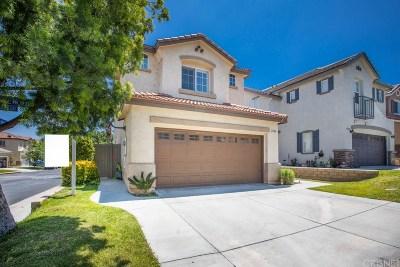 Castaic Single Family Home For Sale: 27610 Elkwood Lane