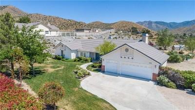 Acton Single Family Home For Sale: 1824 El Dorado Drive
