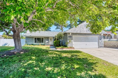 Canyon Country Single Family Home For Sale: 29098 Lillyglen Drive