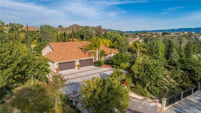 Castaic Single Family Home For Sale: 30514 Terraza Court
