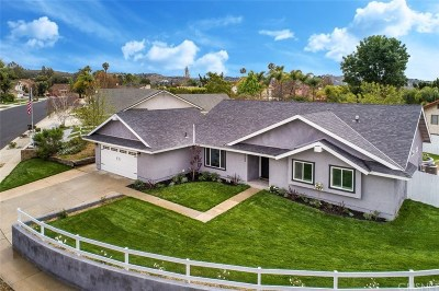 Moorpark Single Family Home For Sale: 4589 Vista Del Valle Drive